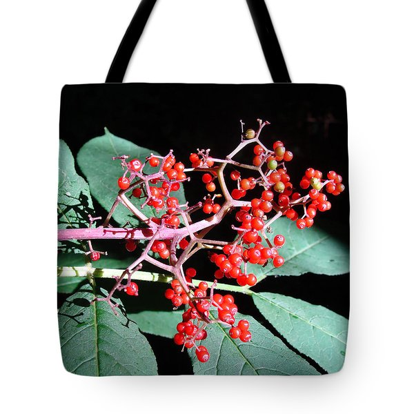 Tote Bag featuring the photograph Red Elderberry by Cheryl Hoyle
