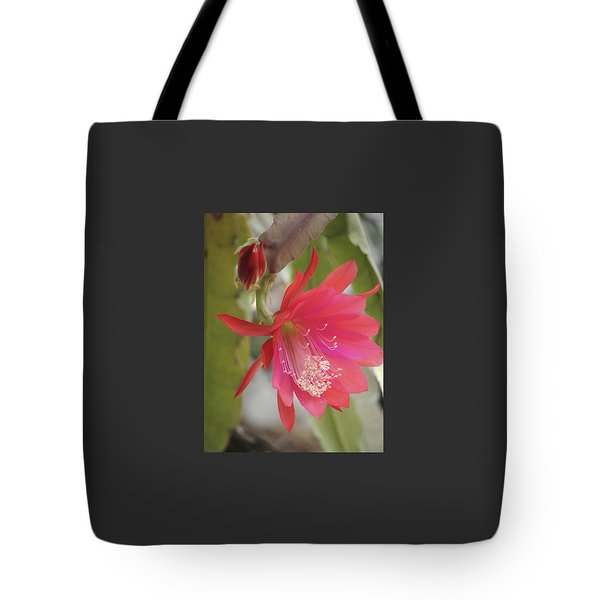 Red Epiphyllum Study Tote Bag