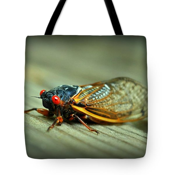Tote Bag featuring the photograph Red Eye Cicada by Kelly Nowak