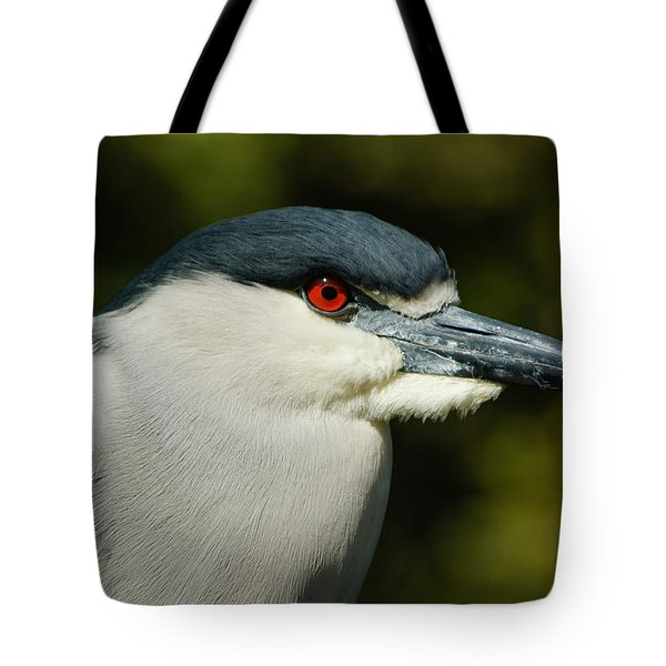 Tote Bag featuring the photograph Red Eye - Black-crowned Night Heron Portrait by Georgia Mizuleva