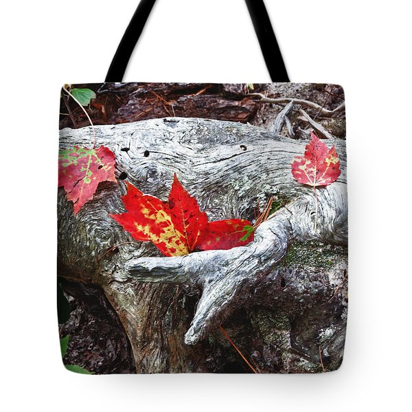 Red Fall Against Grey Tote Bag
