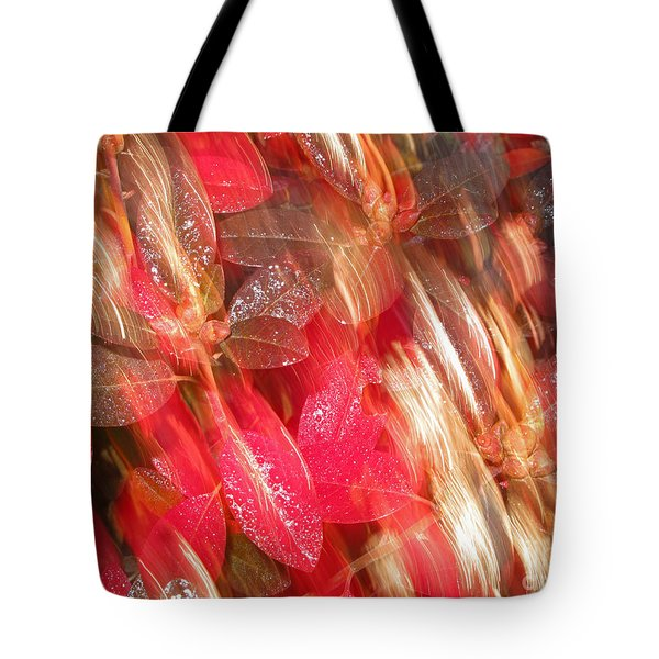Red Fall Leaves 10 Tote Bag by Tony Cordoza