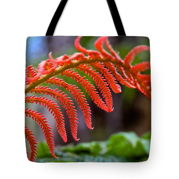 Autumn Fern In Hawaii Tote Bag by Venetia Featherstone-Witty