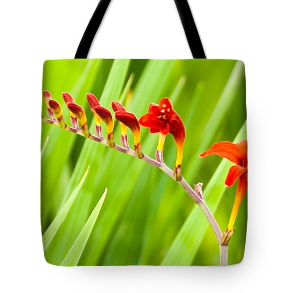 Tote Bag featuring the photograph Red Flower Family by Dee Dee  Whittle