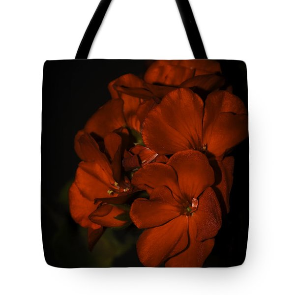 Tote Bag featuring the photograph Red Flowers In Evening Light by Lucinda Walter