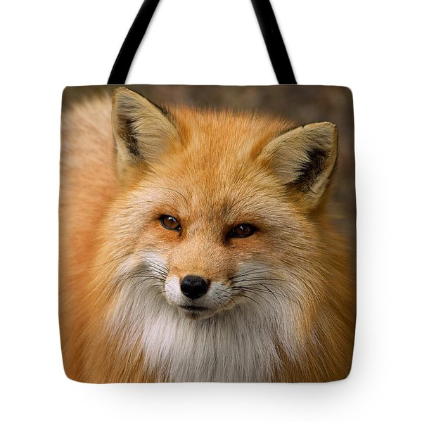 Tote Bag featuring the photograph Red Fox by Nature and Wildlife Photography