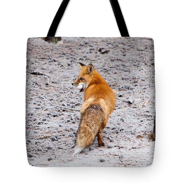Red Fox Egg Thief Tote Bag