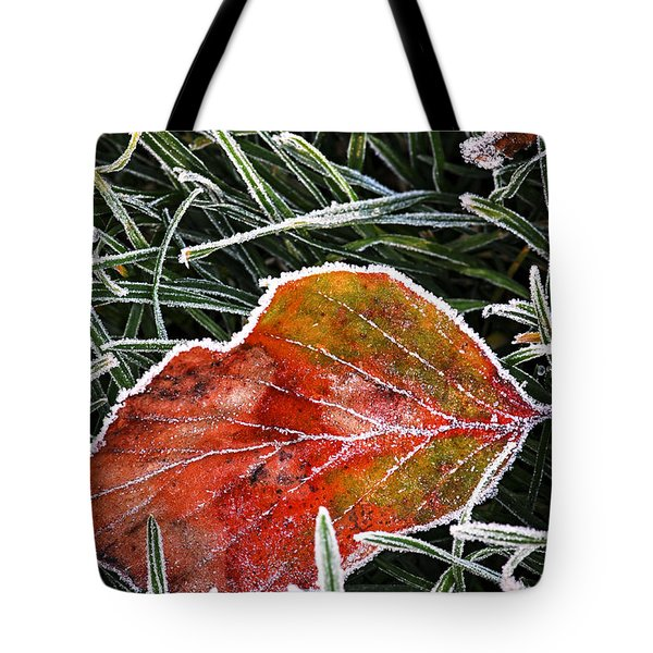 Red Frosty Leaf On Frozen Ground Tote Bag