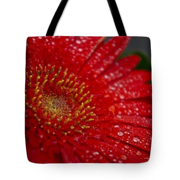 Red Gerber In The Rain Tote Bag by Shelly Gunderson