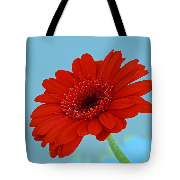 Red Gerbera Daisy Tote Bag