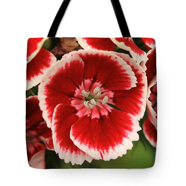 Red Glory All Profits Go To Hospice Of The Calumet Area Tote Bag
