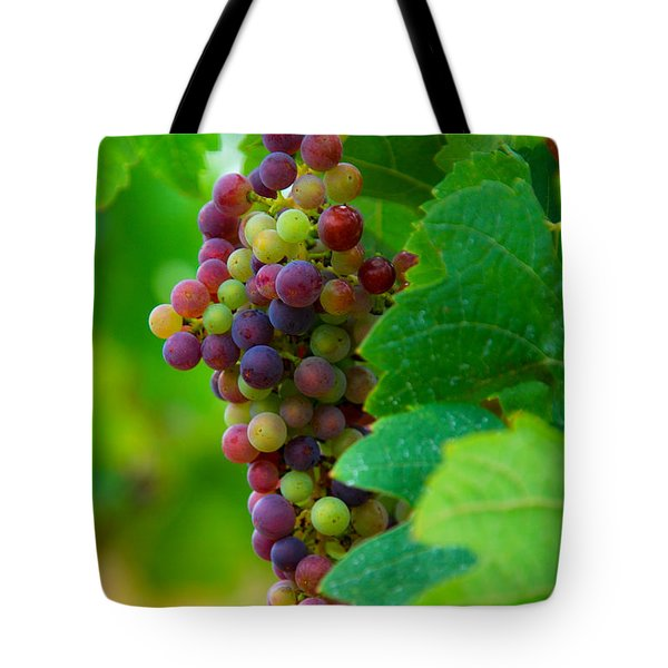 Red Grapes Tote Bag by Hannes Cmarits