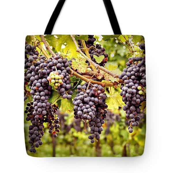 Red Grapes In Vineyard Tote Bag