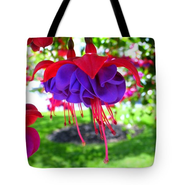 Red Hats Tote Bag by Patti Whitten