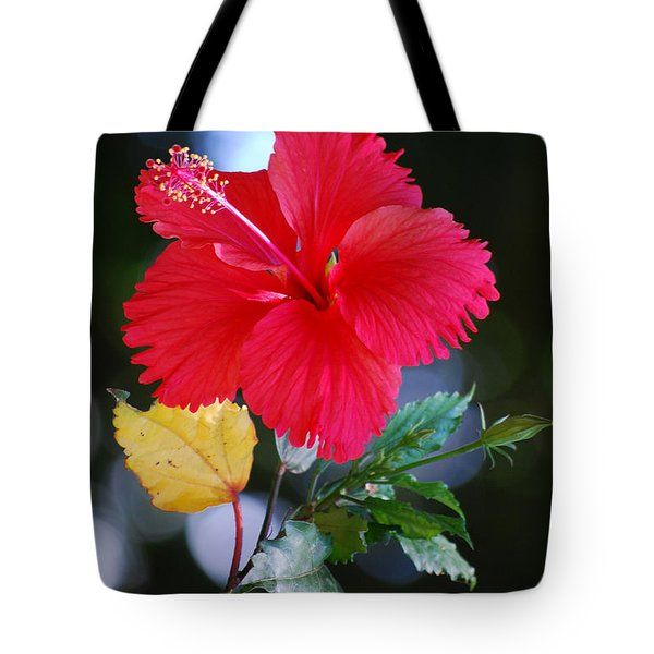 Red Hibiscus Flower Tote Bag by Michelle Wrighton