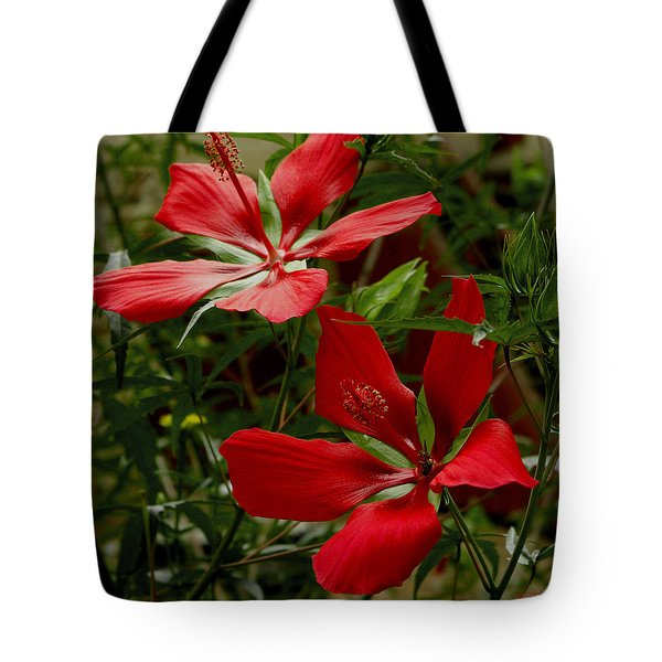 Tote Bag featuring the photograph Red Hibiscus Blooms by James C Thomas