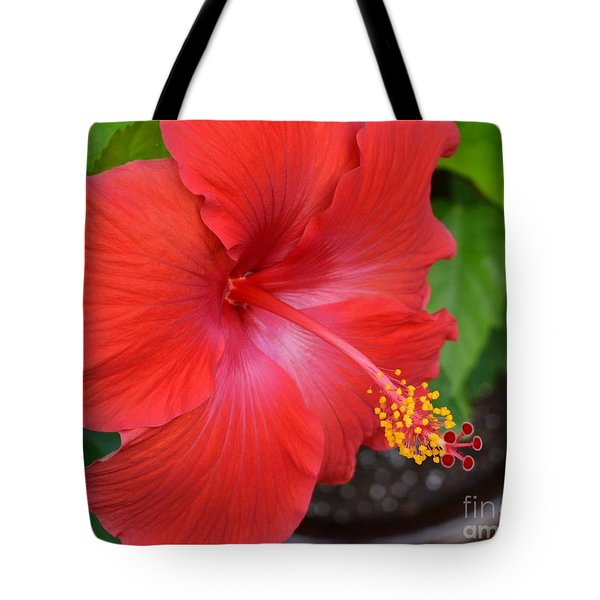 Tote Bag featuring the photograph Red Hibiscus-no2 by Darla Wood