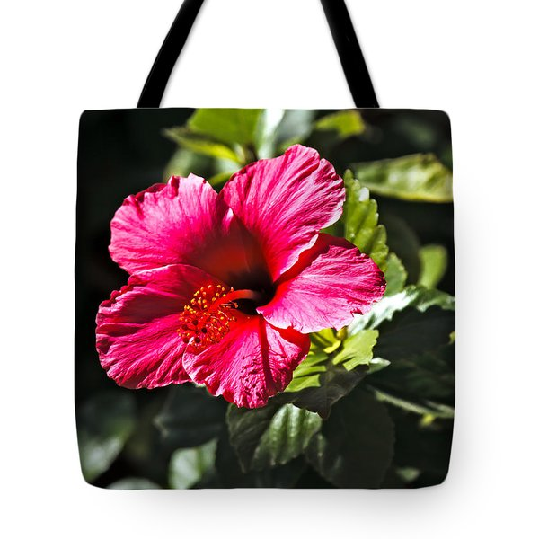Red Hibiscus Tote Bag by Robert Bales