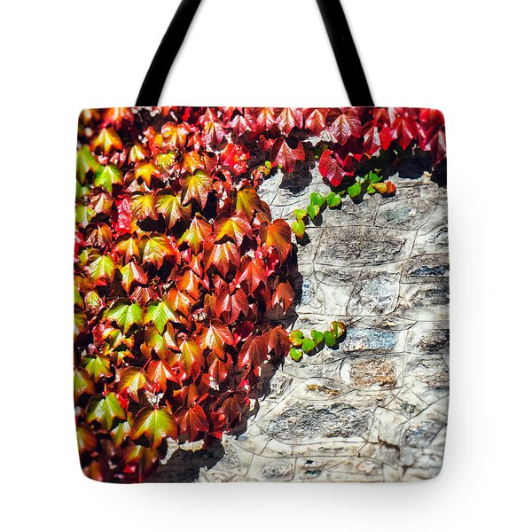 Tote Bag featuring the photograph Red Ivy On Wall by Silvia Ganora