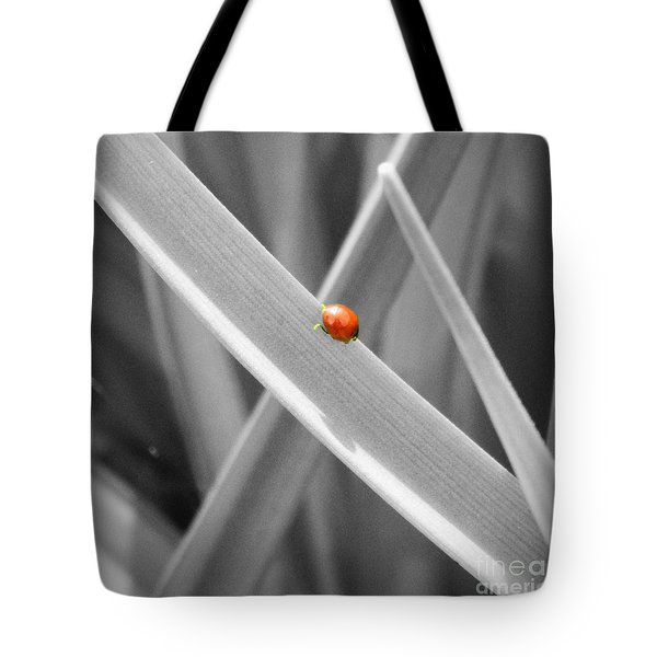 Red Ladybird Tote Bag by Chalet Roome-Rigdon