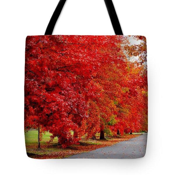 Red Leaf Road Tote Bag