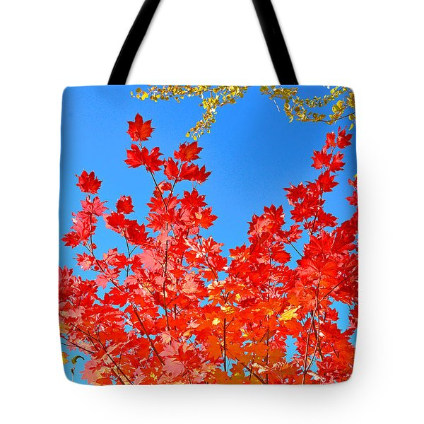 Tote Bag featuring the photograph Red Leaves by David Lawson