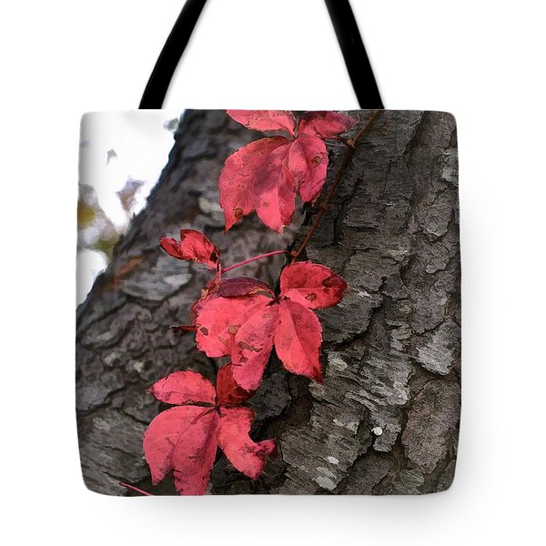 Red Leaves On Bark Tote Bag