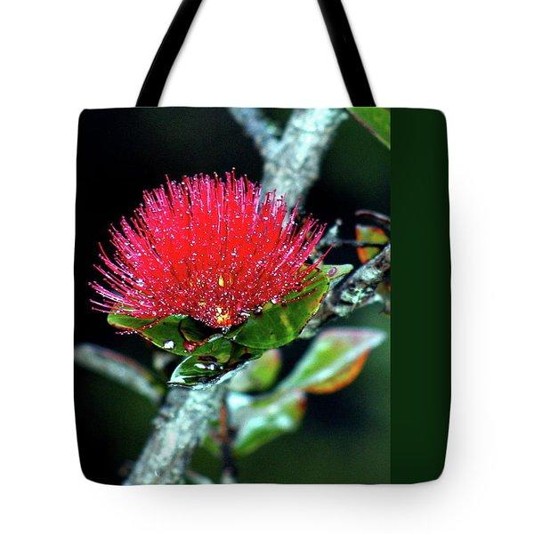 Red Lehua  Kawaiko'olihilihiokalikolehua Tote Bag