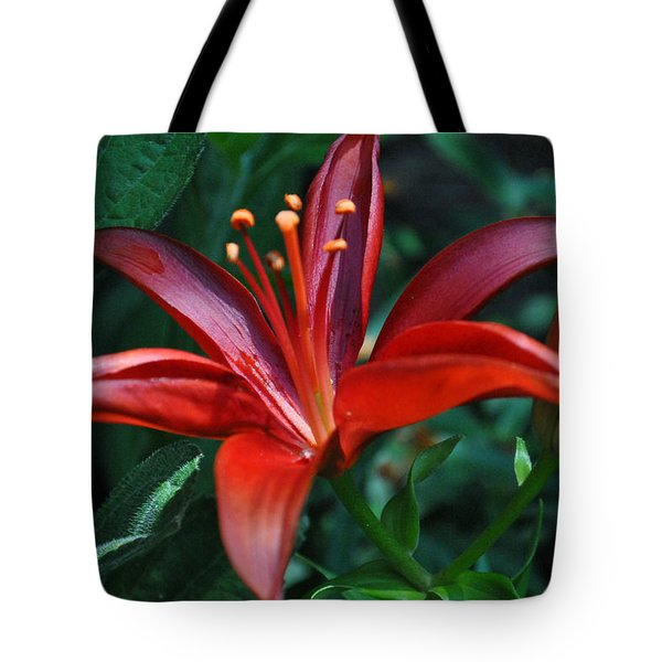 Tote Bag featuring the photograph Red Lily by Kelly Nowak