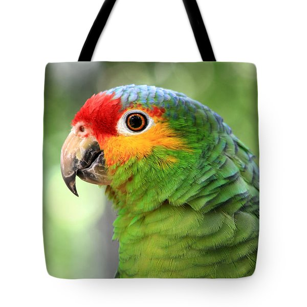 Red-lored Amazon Parrot Tote Bag by Teresa Zieba
