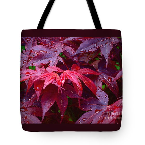 Tote Bag featuring the photograph Red Maple After Rain by Ann Horn
