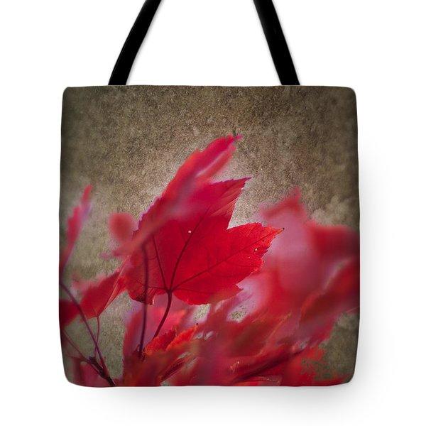 Red Maple Dreams Tote Bag