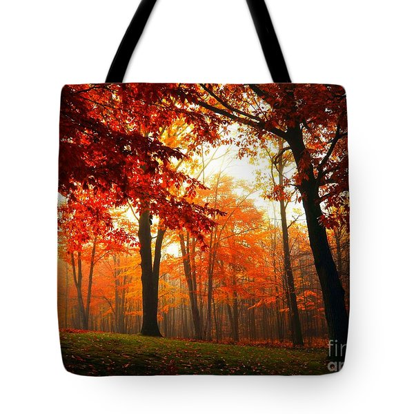 Red Maple Forest Tote Bag by Terri Gostola