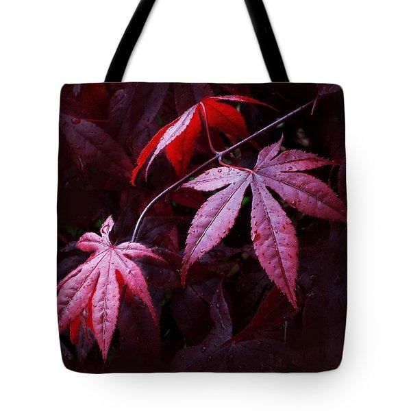 Red Maple Trio Tote Bag