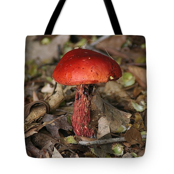 Red Mushroom Tote Bag