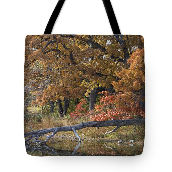 Red Oaks On The Shore Tote Bag