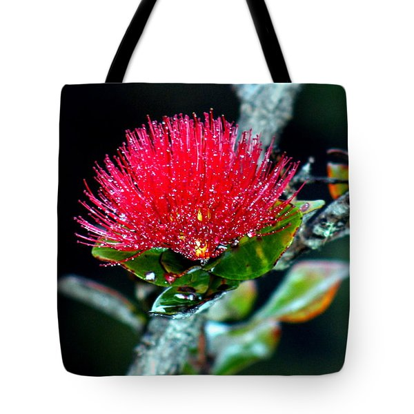 Red Ohia Lehua In Hawaii Volcano Mist Tote Bag by Lehua Pekelo-Stearns