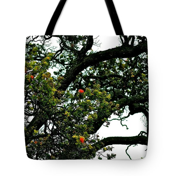 Red Ohia Lehua Tree Tote Bag
