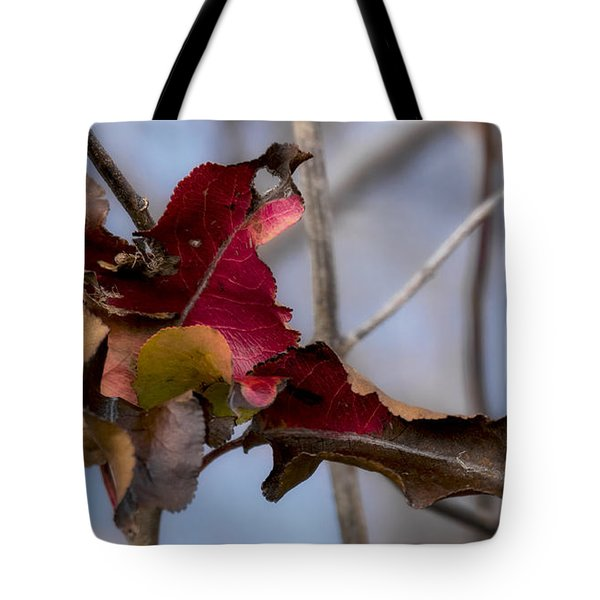 Red Over Branch Tote Bag