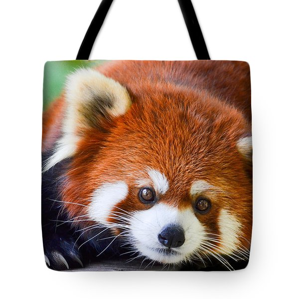 Tote Bag featuring the photograph Red Panda by Michael Hubley