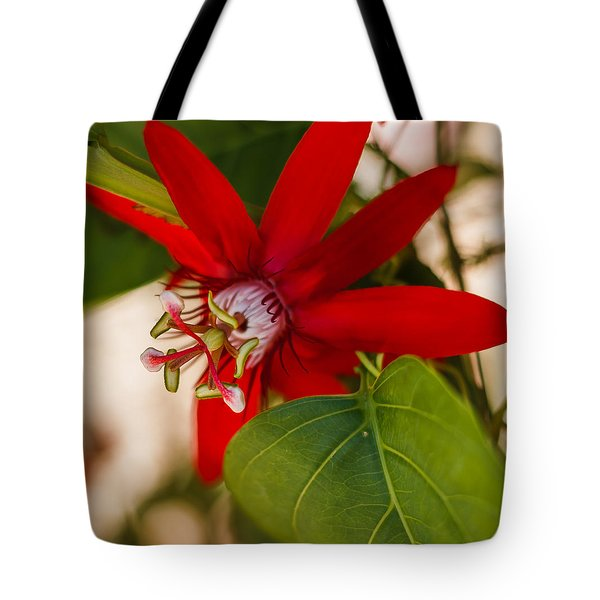 Tote Bag featuring the photograph Red Passion Flower by Jane Luxton
