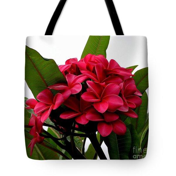 Red Plumeria Tote Bag
