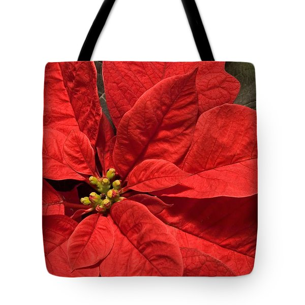 Red Poinsettia Plant For Christmas Tote Bag by Jane McIlroy