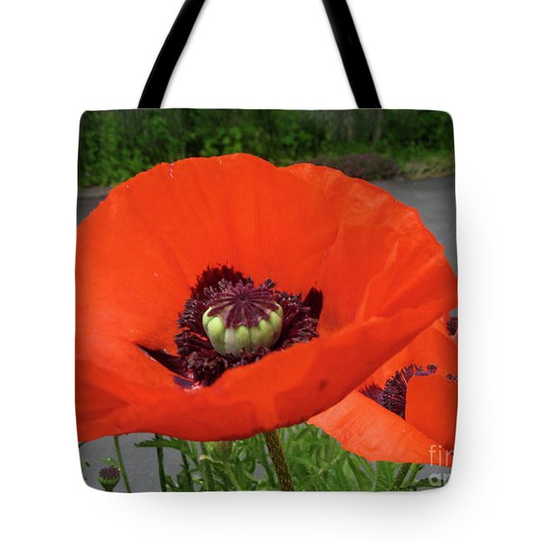 Red Poppy Tote Bag by Barbara Griffin