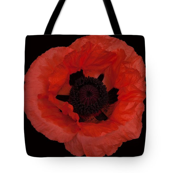 Red Poppy Tote Bag by Susan Rovira