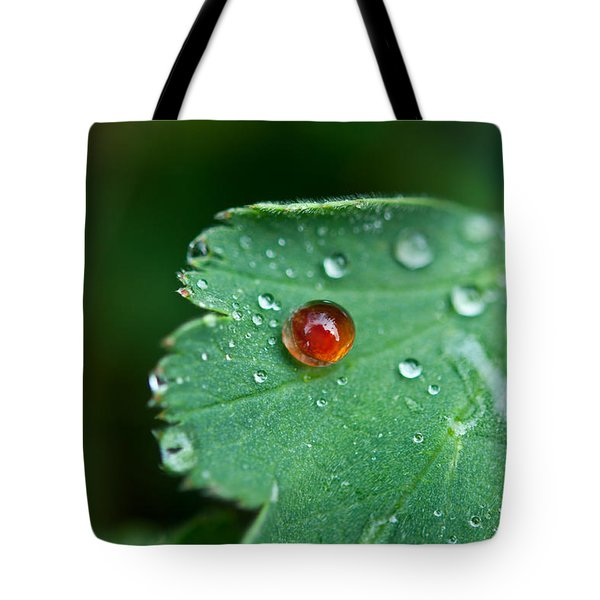 Tote Bag featuring the photograph Red Rain Drop by Sabine Edrissi
