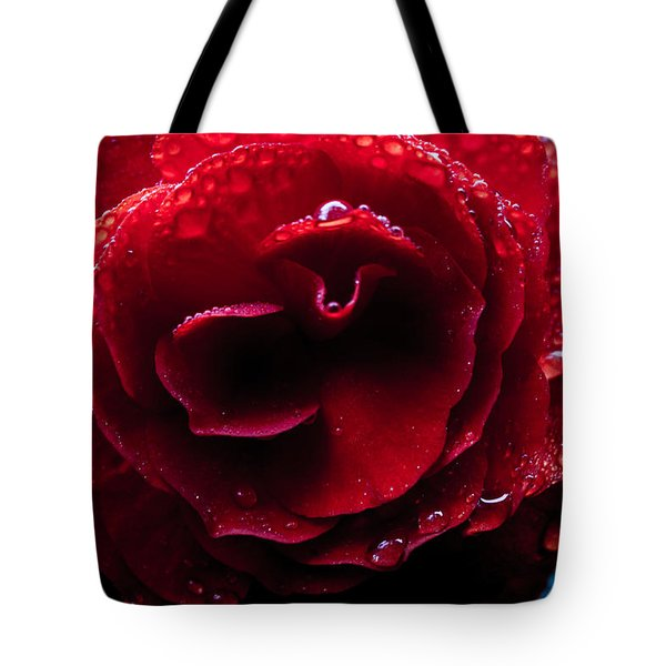 Tote Bag featuring the photograph Red Rain by Glenn DiPaola