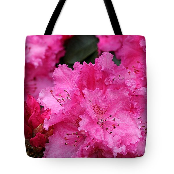 Red Rhododendrons Tote Bag