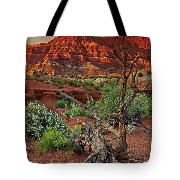 Tote Bag featuring the photograph Red Rock Butte And Juniper Snag Paria Canyon Utah by Dave Welling