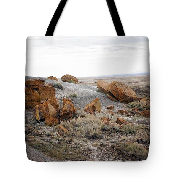 Red Rock Coulee II Tote Bag by Leanna Lomanski